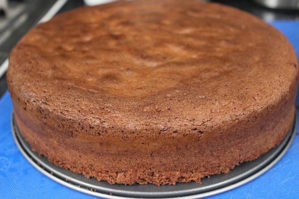 Chocolate Pand di Spagna